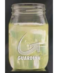 16 Oz. Shindig Glass Jar