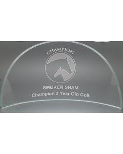 Large Braddock Award