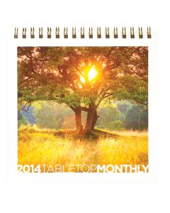 NEW 2015 TableTop Monthly Planner