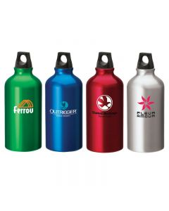 16.9 Oz. Aluminum Flask Water Bottle w/ Twist Top