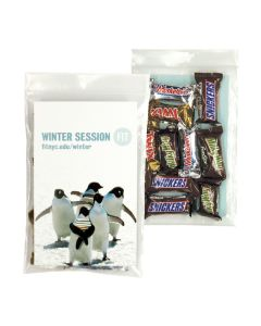 10 Pack Candy Bag with Mixed Mini Candy Bars